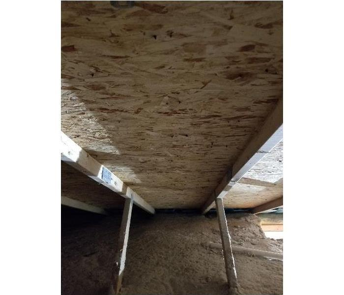Mold Remediation in an Attic After
