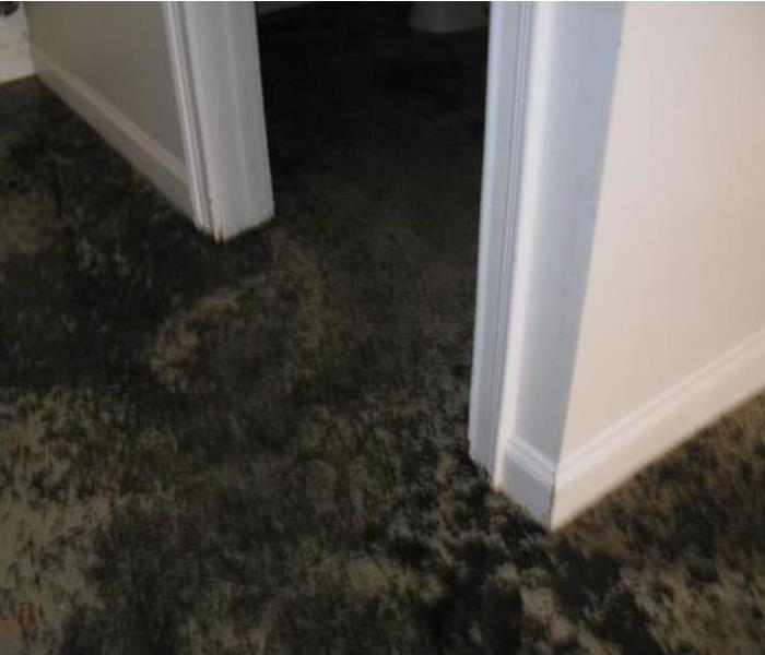 Commercial CONTAMINATED WATER DAMAGE