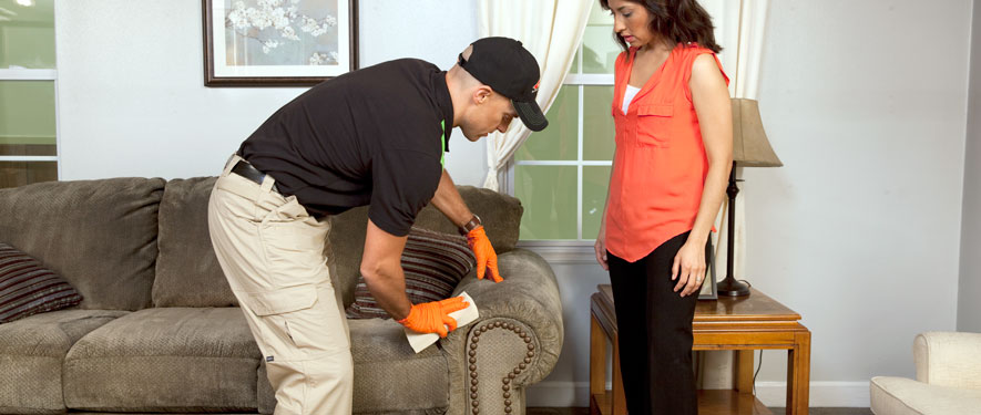 Clinton Township, MI carpet upholstery cleaning