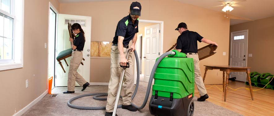 Clinton Township, MI cleaning services